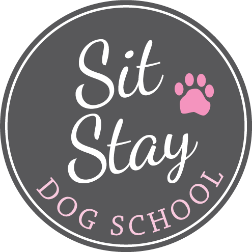 sit stay dog school
